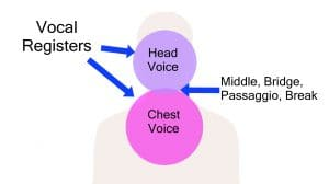 What is Chest Voice - One of the Vocal Registers