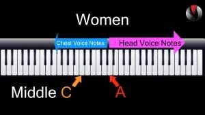 What is Chest Voice - For Women All notes below the A above middle C